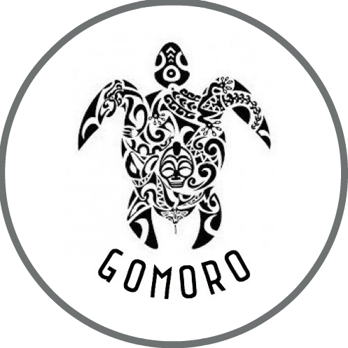 GoMoro – Travel Vlogger